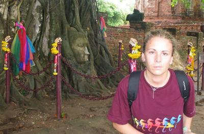 Cabeza de Buda enraizada